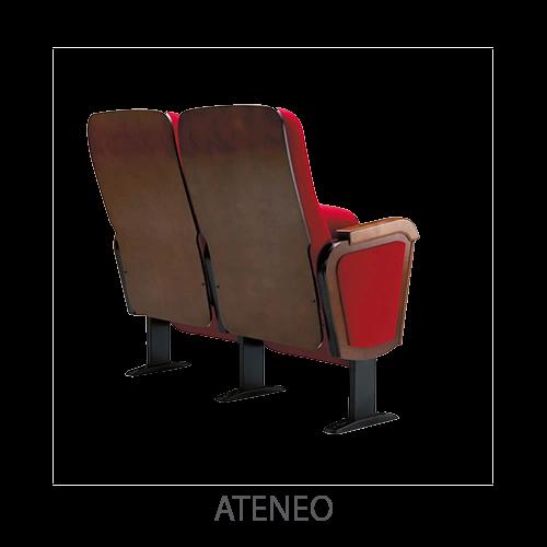Ateneo-trasera