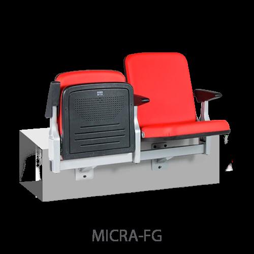 Micra-FG