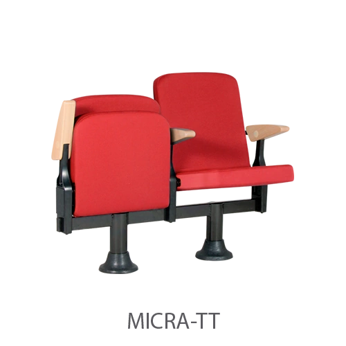 Micra-TT